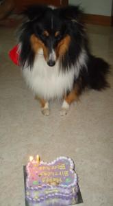 Happy Birthday Bacchus